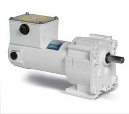 Parallel Shaft DC Gearmotors