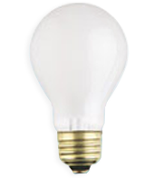 Incandescent Bulbs