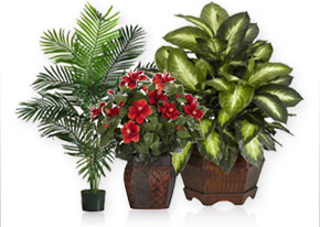 Artificial Plants & Flowers
